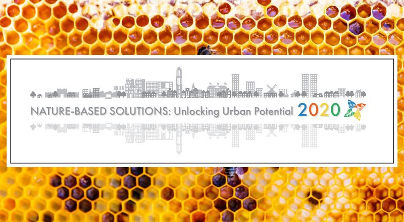 Nature-Based Solutions: Unlocking Urban Potential