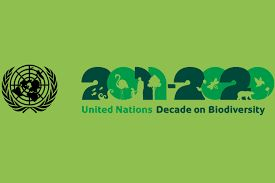 UN Summit on Biodiversity