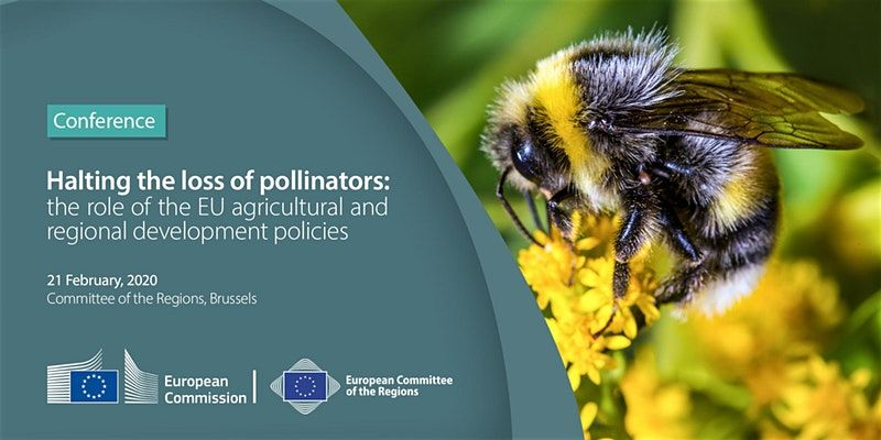 Halting the loss of pollinators: The role of the EU agricultural and regional development policies